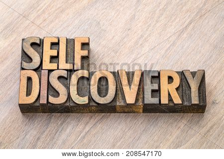 self discovery word abstract in vintage letterpress wood type printing blocks