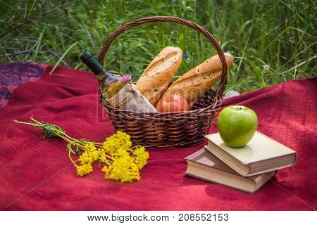 Picnic Basket On The Red Blanket At Nature. Apples, White Wine, Books, Baguettes And Yellow Wild Flo