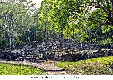 Mayan Ruins in San Gervasio,Cozumel, Mexico