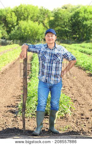 Mature farmer with hoe standing in field in field