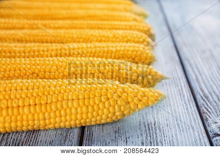 Fresh corn cobs on wooden table