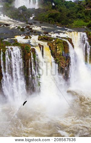 The most full-flowing waterfalls Iguazu. Andean condors fly in the water dust. Complex of waterfalls Iguazu on the border of three countries. Concept of active and extreme tourism