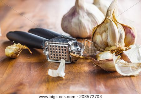 Fresh garlic and garlic presser on wooden table.