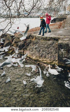 Little kids feeding birds at the lake in wintertime. Image taken in Lausanne Switzerland