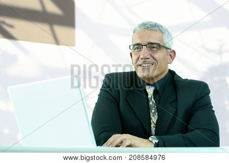 Businessman portrait - gray haired senior business executive at office desk.