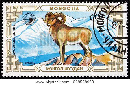 MONGOLIA - CIRCA 1987: a stamp printed in Mongolia shows Mountain Sheep in the Mountains Ovis Ammon Wild Sheep circa 1987