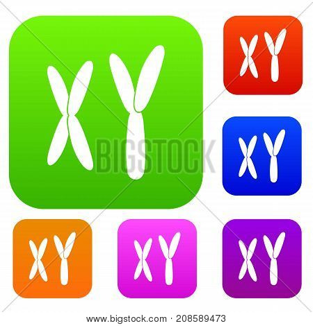 Human chromosomes set icon color in flat style isolated on white. Collection sings vector illustration