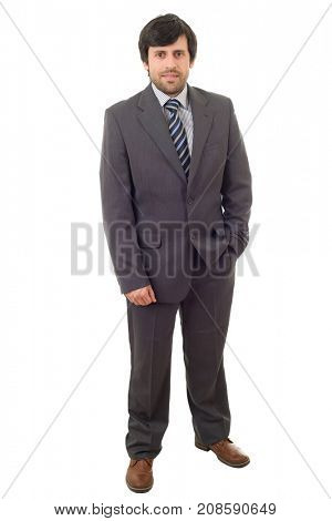 businessman full body isolated on white background