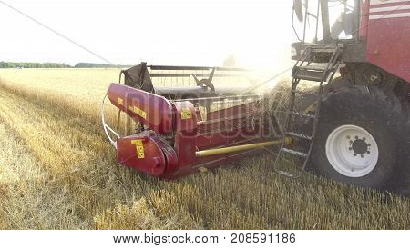 Wheat harvesting shearers. Wheat harvesting agriculture. Harvesting