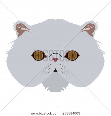 Isolated Persian cat avatar on a white background, Cat breed, Vector illustration
