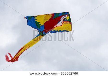 Flying Kite In The Air