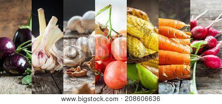 Set Collage Fresh Color Nature Vegetables Prodacts