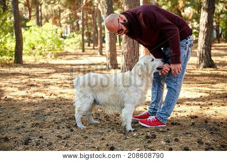 A bald young man with a labrador playing outdoors in the forest. Against the background of the trees. In full growth.