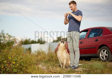 Beautiful golden retriver and owner playing near the river and having fun. Cutie pet and man enjoying life on the fresh air. Full lenght of man with labrador.