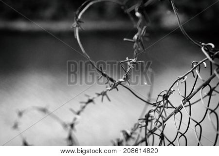 Barbed wire in a web on the background of a river