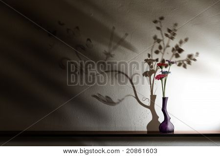 Beautiful Flowers With A Beastly Shadow