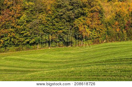 Countryside view in Switzerland in autumn. The picture was taken in the beginning of October near the village of Ringlikon located on Mt. Uetliberg in the Swiss canton of Zurich.