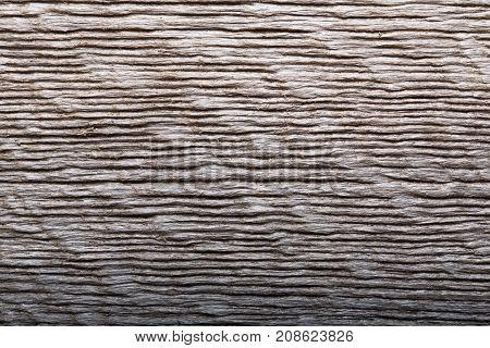 Dark wood background. High resolution photo of wood texture.