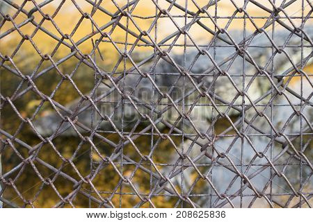 Imprisonment and cruelty to animals rusted metal fence