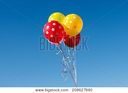 multi colored balloons against the blue sky