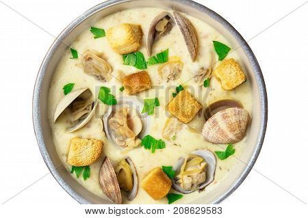 A closeup of a bowl of clam chowder, decorated with fresh parsley and croutons, isolated on a white background