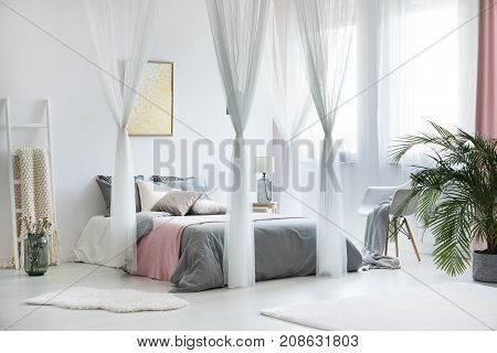 Unique Canopy Bedroom Interior
