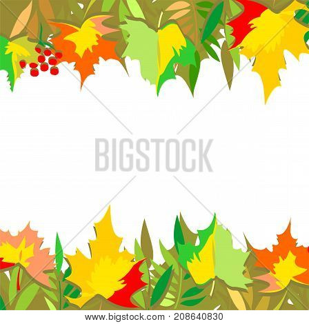 A horizontal vector pattern of autumn leaves. Maple, grapes, ash and mountain ash. Isolated on the background of a white color.
