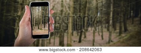 Close-up of cropped hand holding phone against trees in forest