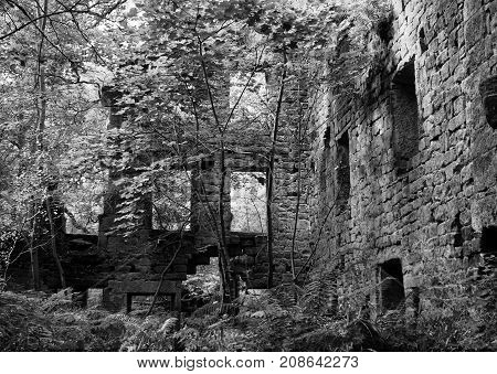 monochrome image of the derelict staups mill a large ruin in woodland in calderdale west yorkshire