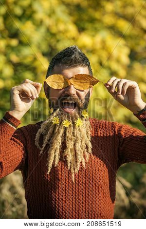 Hipster or bearded guy in autumn nature outdoor. Floral fashion and beauty. Season and autumn leaves with flower. Man with natural spikelet beard sunny fall. Spikelet beard at barber and hairdresser.