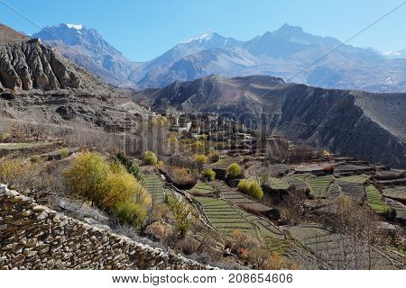 The mountain valley in autumn at an altitude of 4000 meters near the Muktinath