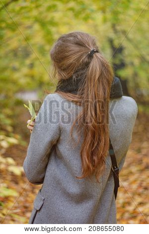 A Young Girl In A Gray Coat And Black Scarf. Rear View. On The Background Of Yellow Autumn Leaves