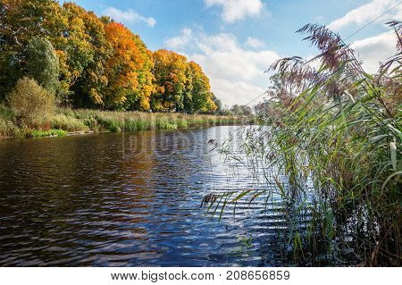 Reflection Of Autumn Forest In The Lake.