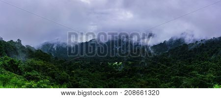 Panoramic beautiful nature of upslope fog on mountaintops after raining Thailand