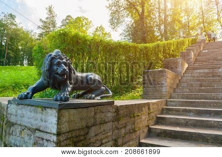 PAVLOVSK RUSSIA - SEPTEMBER 21 2017. Large stone staircase and sculpture of a lion on a pedestal in Pavlovsk park near St Petersburg Russia