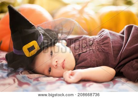 Cute newborn girl wearing witch hat. Halloween decorations greeting card. Orange pumpkins on the background.