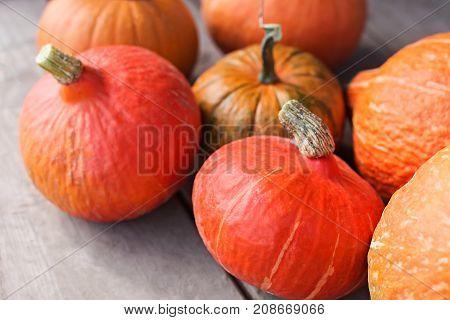 Farmer Market, Thanksgiven Harvest Of Orange Pumpkins.