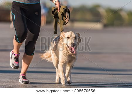 Sportswoman Jogging With Dog