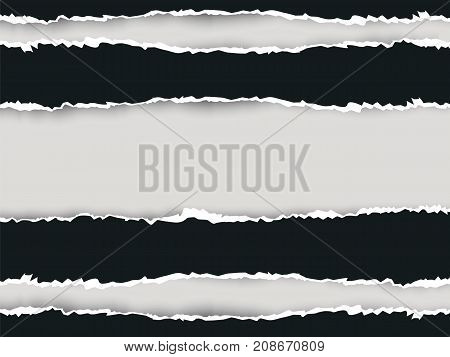 Ripped Paper Long Double 2 Vector