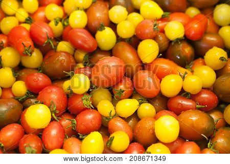 Colorful heirloom little cherry tomatoes. Closeup. Background.