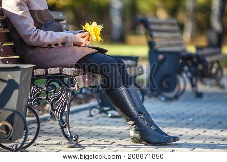 Girl Sitting On The Bench In The Autumn In Park
