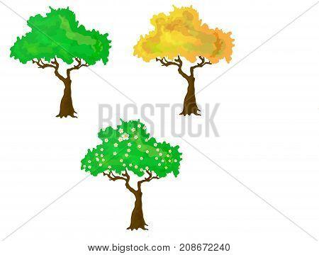 Seasons collection of three vector trees. cartoon style