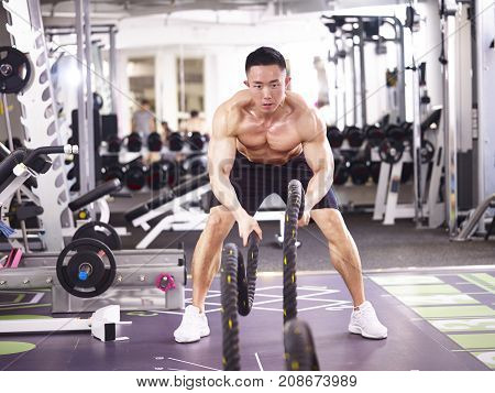asian male bodybuilder working out in gym using battle ropes.