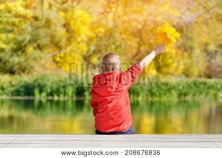 Boy In Red Jacket With Leaves In Hands Sitting On The Dock. Autumn, Sunny. View From The Back