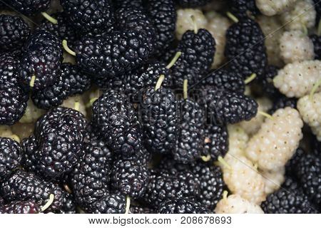 Black and white sweet mulberry background texture