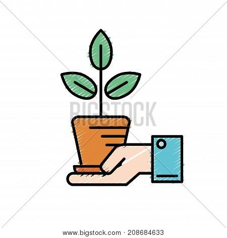 ecology plant with flowerpot and leaves in the hand vector illustration