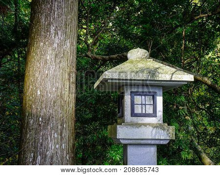 A Stone Lantern At The Temple In Forest