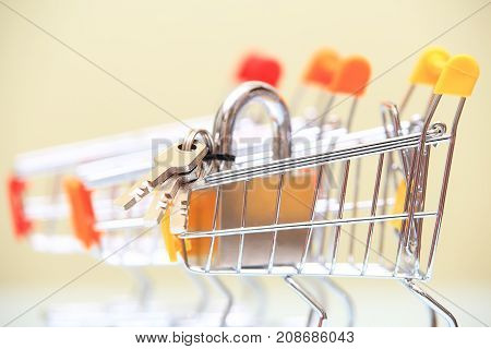 Real estate selling concept. Lock with keys in shiny shopping trolley closeup.