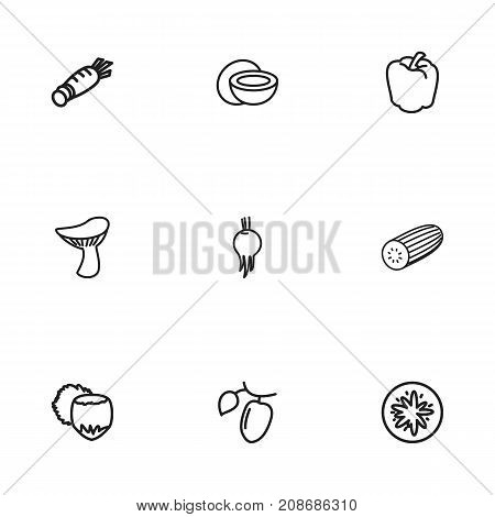 Set Of 9 Editable Vegetable Outline Icons. Includes Symbols Such As Goji, Beet, Zucchini And More