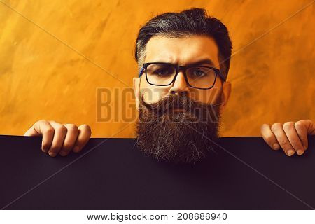 Bearded Man, Brutal Caucasian Hipster With Moustache In Glasses